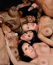 lesbian orgy live cam